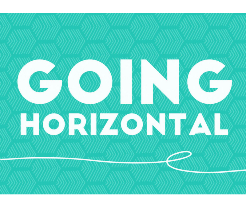 Going Horizontal training