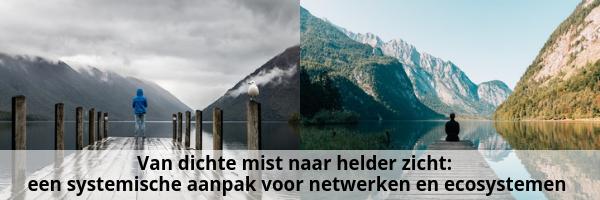 Van dichte mist naar helder zicht: een systemische aanpak voor netwerken en ecosystemen